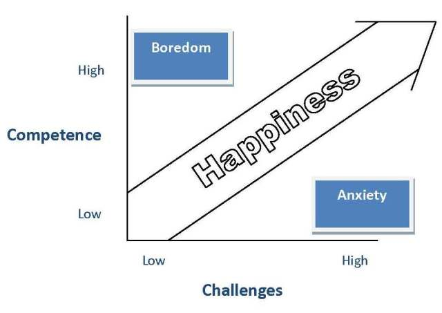 Happiness-Competence-Challenge - Graph
